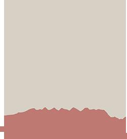 Logo château Bonisson