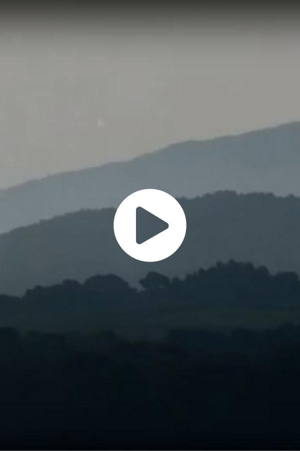 Vidéo Château Bonisson